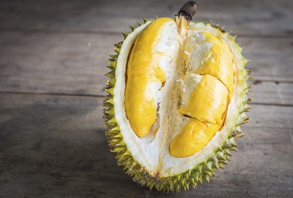 durian-help-reduce-obesity