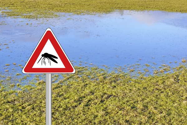 tips-get-rid-of-mosquitoes