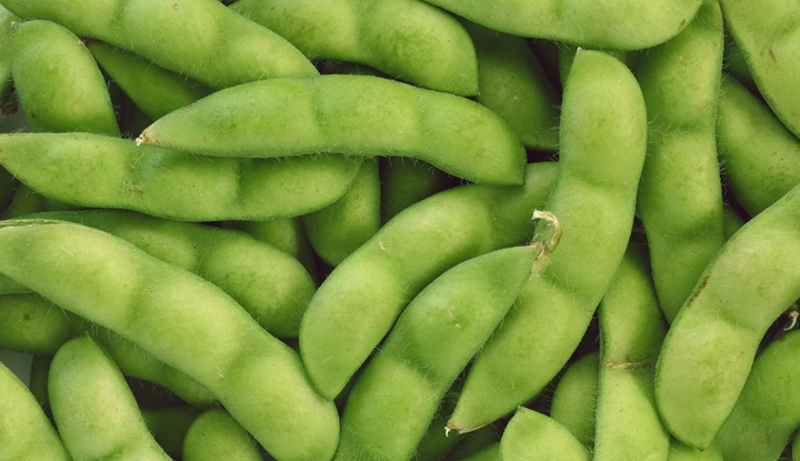 Japanese green soy bean texture background