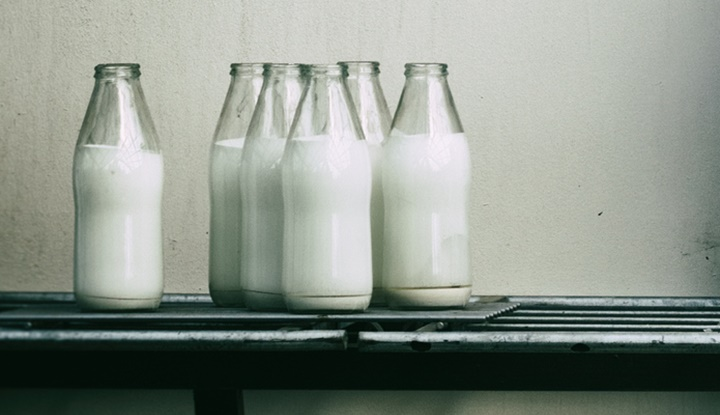 Old milk jugs, cans and bottles