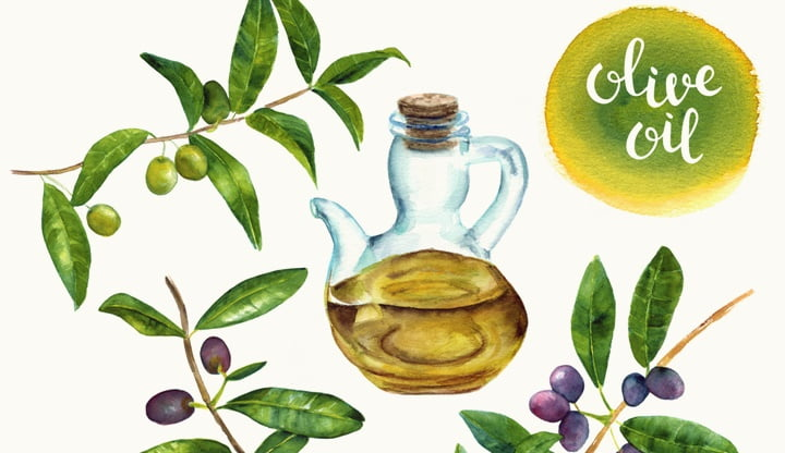 Set of olive oil related hand drawn watercolor design elements
