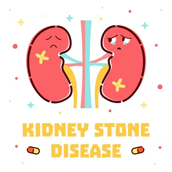 get-fat-to-risk-kidney-disease-is-a-bonus-1