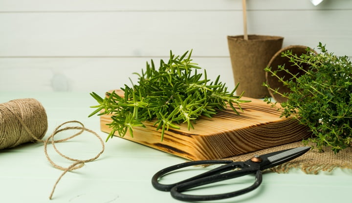 thyme-mix-rosemary