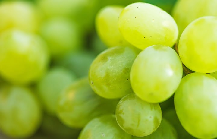 white-on-the-grapes-is-a-dangerous-chemical