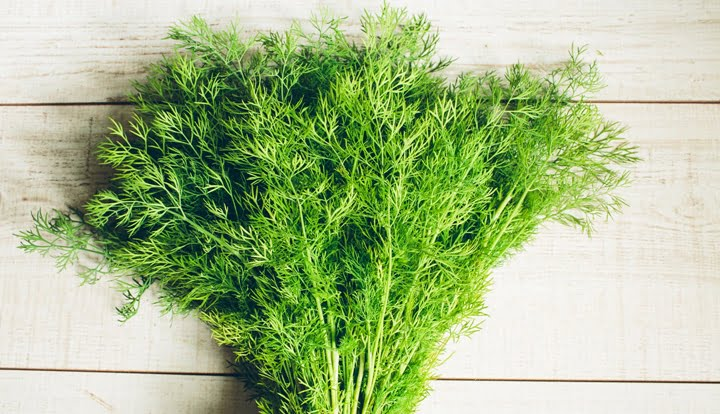 dill-dressing-2