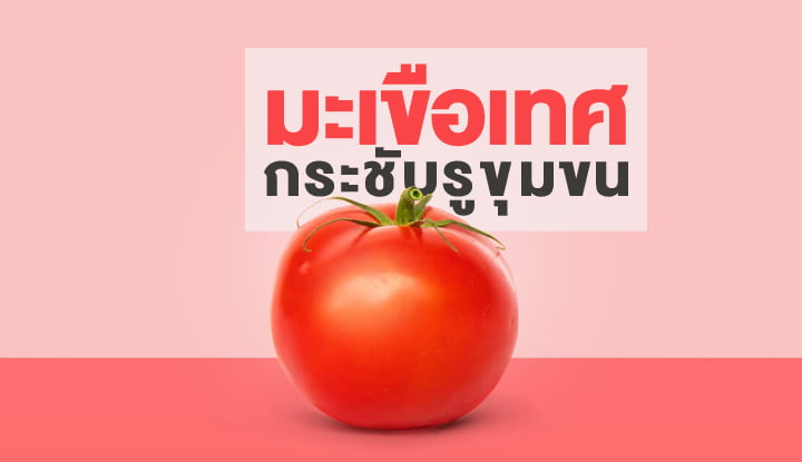 say-goodbye-to-pores-with-a-secret-recipe-from-tomatoes