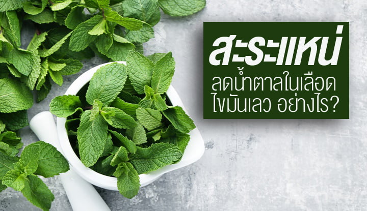 peppermint-with-properties-help-reduce-blood-sugar-and-bad-fat