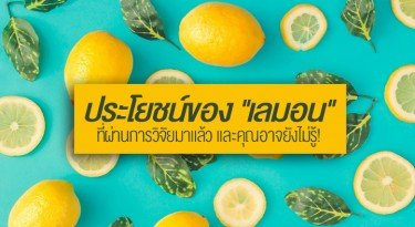6-benefits-of-lemon-that-have-already-been-researched-and-you-may-not-know