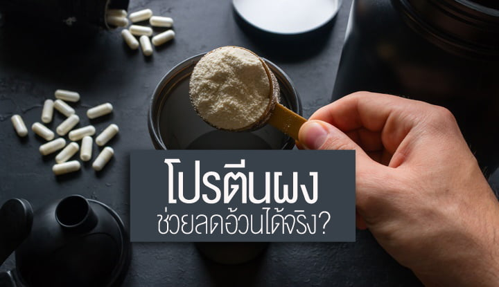 protein-powder-supplements-can-you-actually-lose-weight