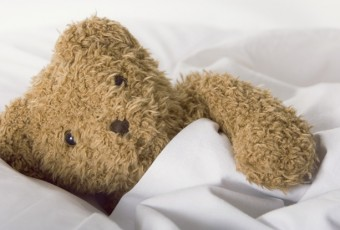 Teddy bear in covers
