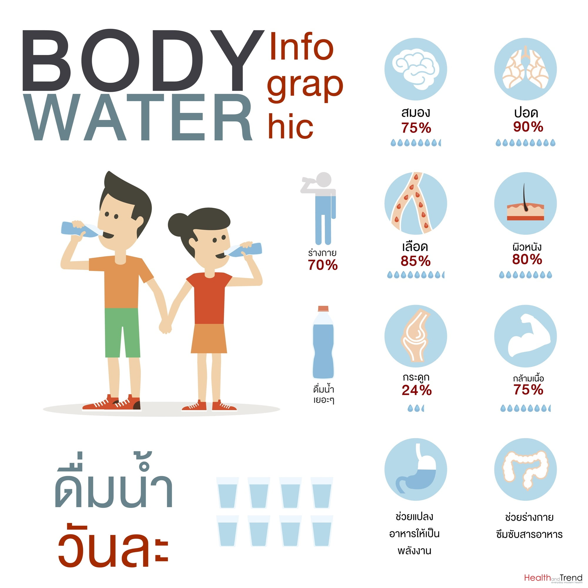 Vector flat style of body water infographic concept.