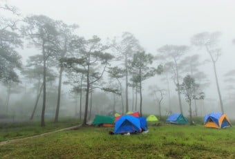 Camping area in the middle winter fog.