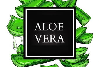 4-aloe-vera-formula-with-various-ingredients-1