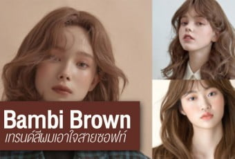 bambi-brown-hair-color-pr