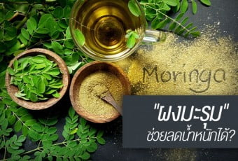 moringa-powder-for-lose-weight
